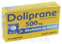 Doliprane 500 Mg Comprimés 2plq/8 (16) à SAINT-PRYVÉ-SAINT-MESMIN