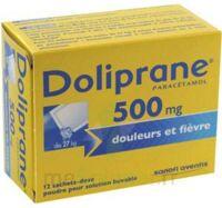 Doliprane 500 Mg Poudre Pour Solution Buvable En Sachet-dose B/12 à SAINT-PRYVÉ-SAINT-MESMIN