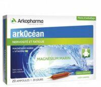 Arkocean Magnesium Marin Solution Buvable Caramel 20 Ampoules/10ml à SAINT-PRYVÉ-SAINT-MESMIN