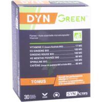 Synactifs Dyngreen Bio Gélules B/30 à SAINT-PRYVÉ-SAINT-MESMIN