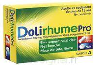 Dolirhumepro Cpr Plq/16 à SAINT-PRYVÉ-SAINT-MESMIN