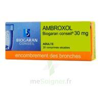 Ambroxol Biogaran Conseil 30 Mg, Comprimé Sécable à SAINT-PRYVÉ-SAINT-MESMIN