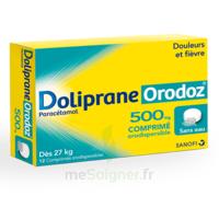 Dolipraneorodoz 500 Mg, Comprimé Orodispersible à SAINT-PRYVÉ-SAINT-MESMIN