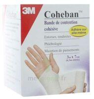 Coheban, Chair 3 M X 7 Cm à SAINT-PRYVÉ-SAINT-MESMIN
