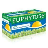 Euphytose Comprimés Enrobés B/120 à SAINT-PRYVÉ-SAINT-MESMIN