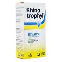 Rhinotrophyl Solution Pour Pulvérisation Nasale 1fl/12ml à SAINT-PRYVÉ-SAINT-MESMIN