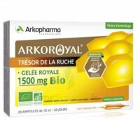 Arkoroyal Gelée Royale Bio 1500 Mg Solution Buvable 20 Ampoules/10ml à SAINT-PRYVÉ-SAINT-MESMIN