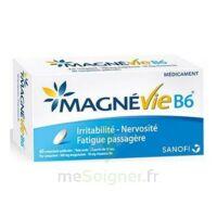 Magnevie B6 100 Mg/10 Mg Comprimés Pelliculés Plaq/60 à SAINT-PRYVÉ-SAINT-MESMIN