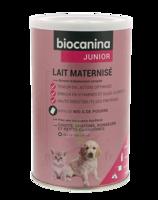 Biocanina Lait Poudre Maternisé B/400g à SAINT-PRYVÉ-SAINT-MESMIN
