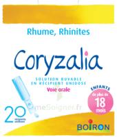 Boiron Coryzalia Solution Buvable Unidose B/20 à SAINT-PRYVÉ-SAINT-MESMIN