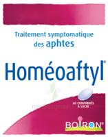 Boiron Homéoaftyl Comprimés à SAINT-PRYVÉ-SAINT-MESMIN