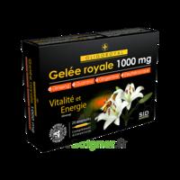 Sid Nutrition Oligoroyal Gelée Royale 1000 Mg 5g _ 20 Ampoules De 10ml à SAINT-PRYVÉ-SAINT-MESMIN