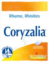 Boiron Coryzalia Comprimés Orodispersibles à SAINT-PRYVÉ-SAINT-MESMIN
